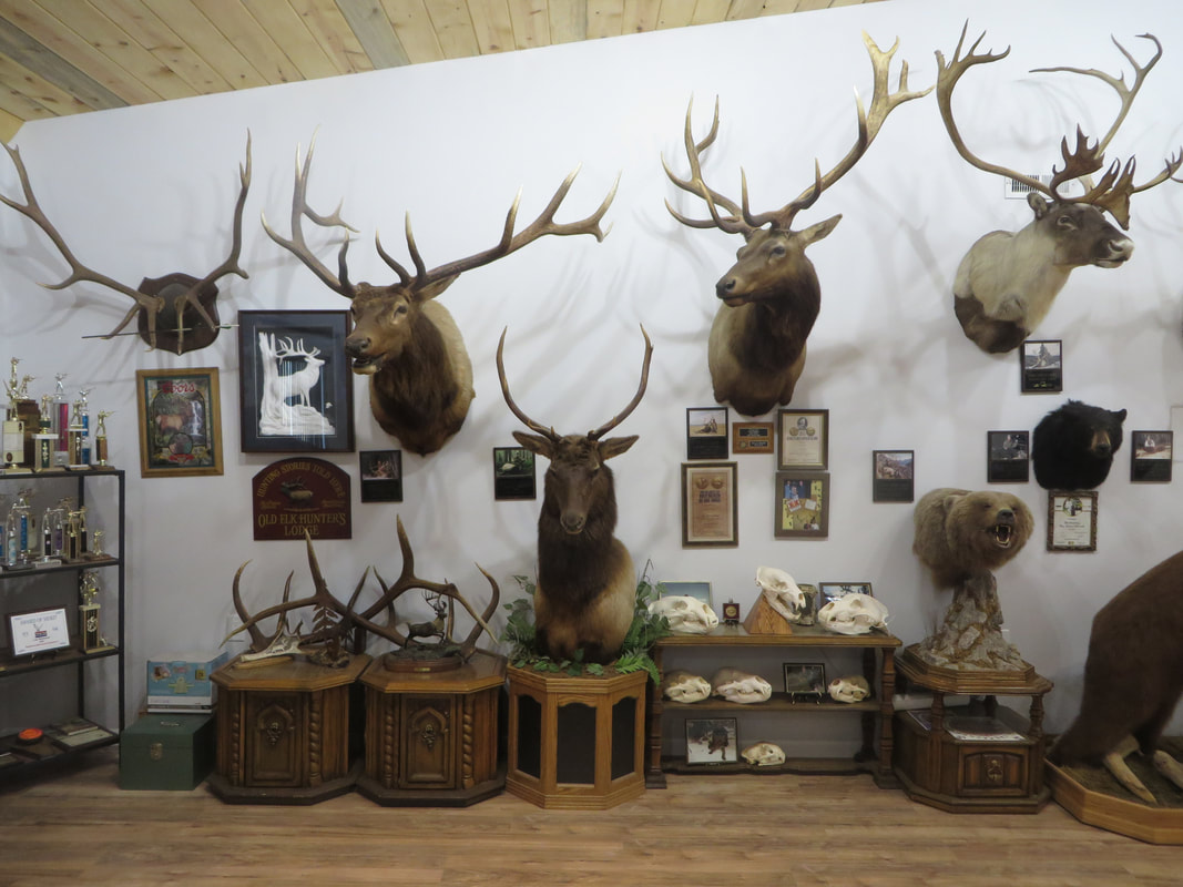 Hunting Conservation Lee Wahlund